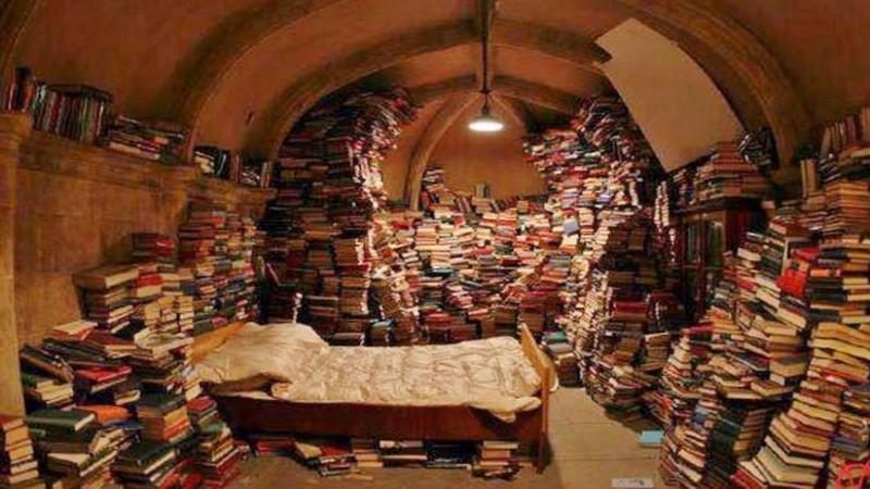 L'Enric es menja paraules, pàgines i llibres sencers fins que un dia entra al nostre Bosc Imaginat.  De la mà d'una fada descobreix una altra forma de ser un nen intel.ligent.