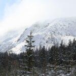 Gegant de neu